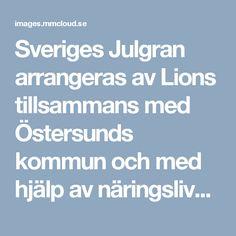 Sveriges Julgran arrangeras av Lions tillsammans med Östersunds kommun och med hjälp av näringslivet. Överskottet går varje år till barn och ungdomar i Östersund via olika projekt.