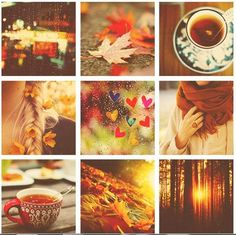 rainy autumn day with tea...bliss!