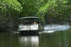 Appleton Rum Tour and Black River Safari Tour from Montego Bay and Grand Palladium - Montego Bay   Viator