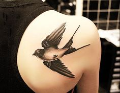 50 Lovely Swallow Tattoos | Cuded
