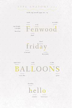 type anatomy #design #typography