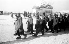 The Battle of STALINGRAD. A column of German prisoners of war on the streets of the ruined village at Stalingrad. 1943