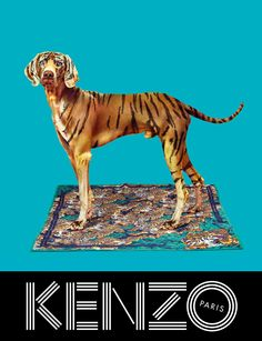 Kenzo collaborated with the creative minds behind TOILETPAPER magazine, Maurizio Cattelan, Micol Talso and Pierpaolo Ferrari, for the Fall/Winter 2013 campaign, starring Sean O'Pry and Japanese actress Rinko Kikuchi posing in a surreal. Sean O'pry, Paper Magazine, Magazine Art, Rene Magritte, Fashion Advertising, Advertising Campaign, Guerrilla Advertising, Missoni, Rinko Kikuchi