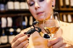 The world's first insect and wine matching guide has been created by a British wine merchant.As well as pairing Chardonnay to tarantulas, buyers at Laithwaite's Wine matched sparkling rose to Best Wine Clubs, Wine Club Membership, Wine Press, Wine Country Gift Baskets, Wine Tasting Events, Wine Merchant, Buy Wine Online, Wine Guide, Wine Subscription