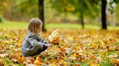 5 activités d'automne