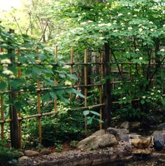 A Tool And Potting Shed In A Japanese Garden That Is Also A Sitting Area  Over. Bamboo GardenBamboo FenceGarden ...