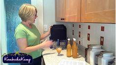 Continuous Brew Kombucha On Tap - Lisa Hainsworth Loves Kombucha Kamp!