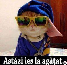 Stupid Funny Memes, Favorite Quotes, Cute Animals, Henna, Internet, Random, Sweet, Diy, Crafts