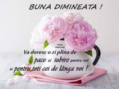 Imagini buni dimineata si o zi frumoasa pentru tine! - BunaDimineataImagini.ro Words Of Encouragement, Good Morning, Faith, Messages, Blog, Sora, Bible, Quote, Facebook