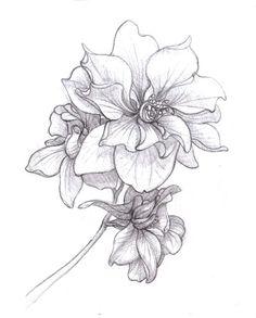 Larkspur - Tattoo for Shoulder Cap - July Birth Flower