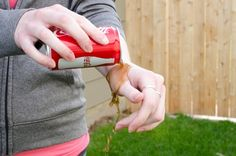 Soothe a wasp or hornet sting with coke Red Wasp Sting, Cleaning With Coke, Cleaning Hacks, Remedies For Bee Stings, Free Starbucks Drink, Wasp Stings, Healing Spells, Places
