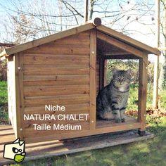 Superbe abris pour chat, véritable maisonnette pour chat Réalisé en bois, cette niche pour chat à la particularité de posséder un auvent qui va permettre à votre chat de pouvoir se prélasser tout en étant à l'abri des intempéries. Pour isoler l'animal du sol de l' humidité et du froid, la niche est montée sur quatre pieds et est équipée d'un plancher terrasse en bois ou votre chat va pouvoir s'étirer de tout son long. Les nombreux avantages de ce mod... Feral Cat House, Feral Cats, Cat Accessories, Dog Houses, Medium, Shed, Backyard, Outdoor Structures, Animals