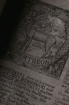 Inscription | The North Realm