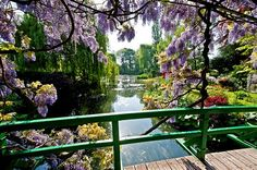 View from the famous bridge over the water lily pond in Monet's Garden in Giverny, Normandy <3