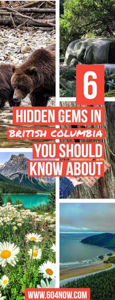 6 Hidden Gems In British Columbia You Didn't Know About is known for its mountainous regions and coastal views, but there are plenty of to discover! Have British Columbia travel plans coming up? This one's for you. Camping Places, Places To Travel, Travel Destinations, Places To Visit, Travel Tips, Budget Travel, Vancouver British Columbia, Vancouver Island, Banff