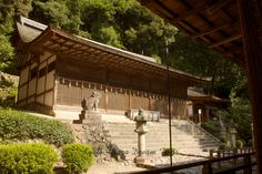 Ujigami Shrine and Kirihara-sui! The Honden is the place where the Shinto gods are enshrined. This structure was build around This is the oldest shrine structure in Japan. Ujigami Shrine, Kamakura Period, Meiji Restoration, Shiga, Heritage Site, Monuments, Kyoto, Pergola, Old Things