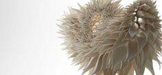 sculpture Handmade porcelain sculptures by Nuala ODonovan Mimic Fractal Patterns found in nature Fractal Patterns, Patterns In Nature, Organic Ceramics, Modern Ceramics, Contemporary Ceramics, Contemporary Jewellery, Contemporary Artists, Irish Design, Sculptures Céramiques