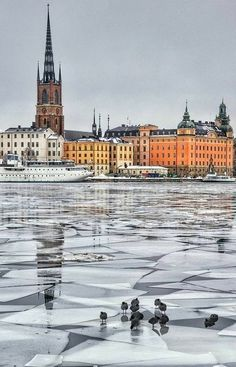 Stockholm on ice, Sweden Sweden Stockholm, Visit Stockholm, Stockholm Shopping, Oh The Places You'll Go, Places To Travel, Places To Visit, Sweden Travel, Spain Travel, Wonderful Places