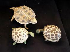 Tortoise Trio - Paper Mache' - Carol Samford