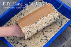 Do It Yourself Bird Feeder Craft! Great Spring fun! Get a toilet paper roll and cover it with a lot of peanut butter, then roll it in seeds