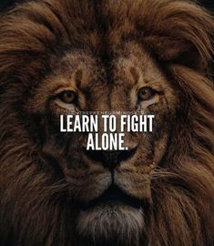 577 Motivational & Inspirational Quotes About Life – Motivational Quotes Wisdom Quotes, True Quotes, Motivational Quotes, Inspirational Quotes, Qoutes, Peace Quotes, Learn To Fight Alone, Lion Quotes, Warrior Quotes