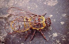 New Environmental Art - Willow and Metal Sculptures, Plant Photography