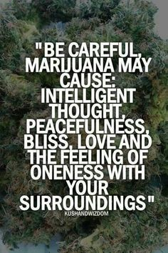 ''Be Careful Marijuana May Cause: Intelligent Thought, Peacefulness, Bliss, Love and the Feeling of Oneness with Your Surroundings'' From RedEyesOnline.net