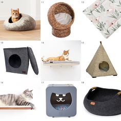 Pet supplies that look great in your home! // Attractive pet products // via Yel… Pet supplies that look great in your home! // Attractive pet products // via Yellow Brick Home Love Your Pet, Love Pet, Pet Beds, Dog Bed, Kids Crafts, Cat Crafts, Gatos Cat, Sleeping Dogs, Animal Shelter