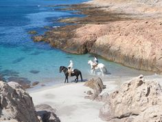 Bahía Bustamante-I would love to ride horses on the beach.