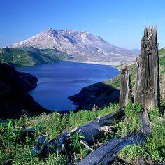 Mount St. Helens National Monument, Washington - 2005
