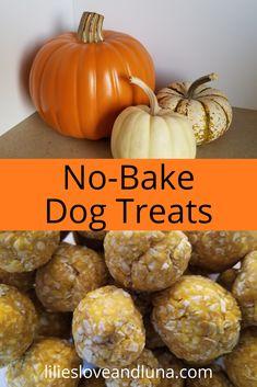 Easy 3 ingredient no-bake treats for your dog. Dog Pumpkin, Pumpkin Dog Treats, Homemade Dog Treats, Healthy Dog Treats, No Bake Dog Treats, Peanut Butter Dog Treats, Doggie Treats, Sweet Potatoe Bites, Sweet Potatoes For Dogs