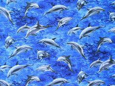 R. Kaufman - Adrian Chesterman 'Island Sanctuary' Bildgröße 46,5 cm x 35 cm ti-138-01-9085 https://planet-patchwork.de/de/article/ti/29229/5/