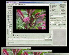 VLC Media Player is a Free Multimedia Player Software capable of reading most video and audio formats. VLC Media Player - Free Download. VLC Media Player
