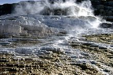 Drive Day Trips Through Yellowstone National Park: Part 3