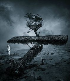 Awesome Photo Manipulations by Akam Gunesi