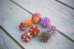 colorful pinecones by plakka, via Flickr