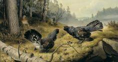 Ferdinand, Wildlife Art, Finland, Watercolor Art, Artsy, Animals, Vintage, Kulta, Design