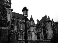 Notre Dame - Paris - Foto: Arquiteta Cláudia F. Ferreira