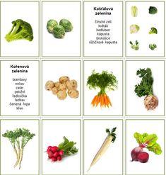 Preschool, Korn, Plants, Science, Biology, Kid Garden, Kindergarten, Plant, Preschools
