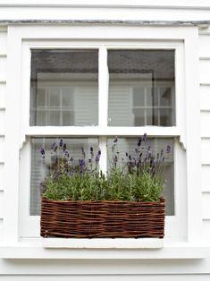 Rieten plantenbak voor in de vensterbank of aan de schutting. Mooi met die lavendel erin.