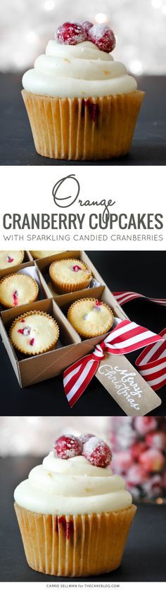 Sweet and tart candied cranberries top a cranberry orange cupcake. Delicious with or without the cream cheese frosting! | by Carrie Sellman for TheCakeBlog.com