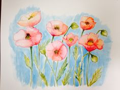One of my first watercolours A field of poppies