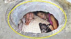 বছর ধর বসবস করছ মযনহল  22 Years Living Manhole | অবক কর তথয https://youtu.be/GPAnJqBUcyE
