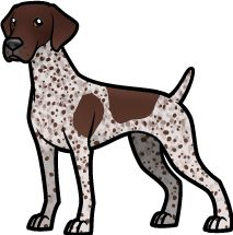 Pointer Puppies, Pointer Dog, German Shorthaired Pointer Black, Silhouette, Tortoise As Pets, Puppy Classes, Cute Dogs And Puppies, Cartoon Dog, German Shepherd Puppies