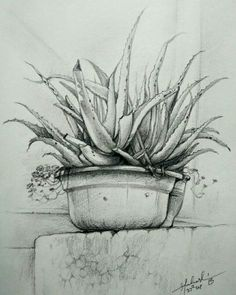 One of my pencil drawings