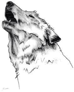 A personal favourite from my Etsy shop https://www.etsy.com/uk/listing/491577157/white-wolf-pen-and-ink-print