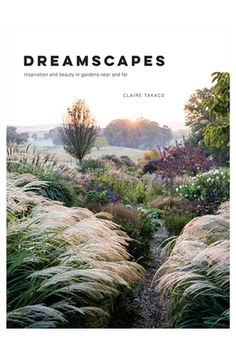 | Dreamscapes by Claire Takas (Hardback) | Myer Online