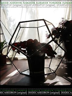 KAGADATO. Florarium - DODECAHEDRON [original]. The multi-faceted form. Made by Tiffany technology. Clear glass. It consists of many parts. The metal compound glass. It can be used as a lamp or a vase for flowers.