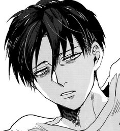 Sleepy Levi - Attack on Titan/Shingeki no Kyojin