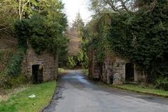 Castle Caldwell Forest & RSPB Reserve - my family's ancestral home